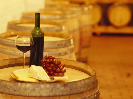 Wine tasting tours and visits to wineries are among the most popular ways to pass the time in Florence