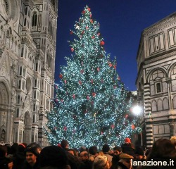 Christmas tree with red gigli in front of Duomo in Florence