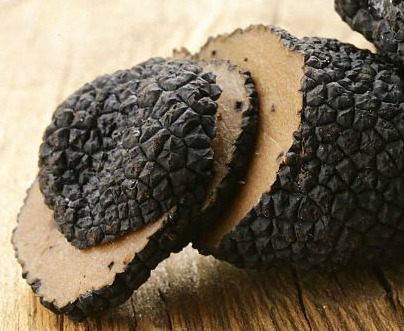 October welcomes the truffle festival in the outskirts of Florence