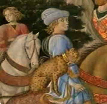 Lorenzo's brother Giuliano in an idealized image with an Asian cheetah